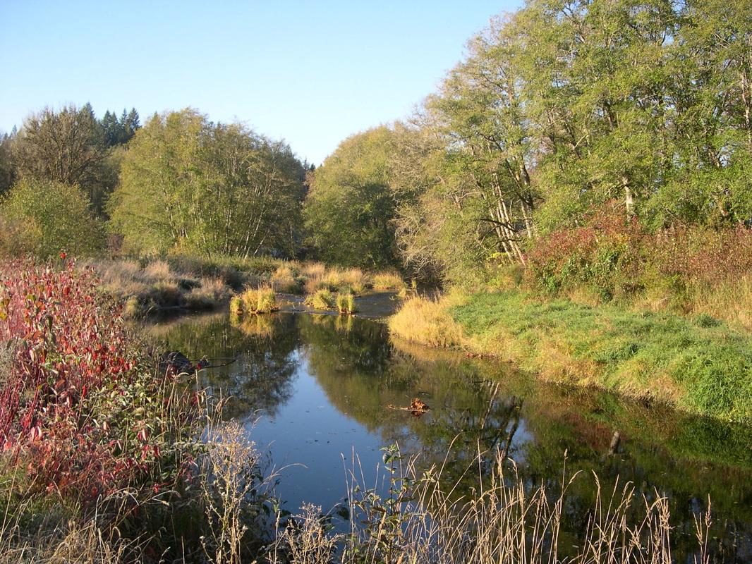 CSL - Camp River